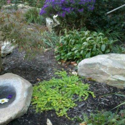 Granite Rock Bird Bath