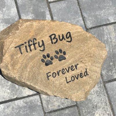 Tiffy Bug
