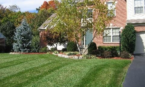 Lawn Aeration & Mowing